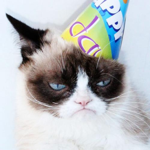 grumpy-cat-bday.jpg